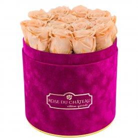 Eternity Peach Roses & Fuchsia Flocked Flowerbox