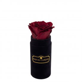 Eternity Red Rose & Mini Black Flocked Flowerbox