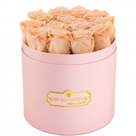 Roses Éternelles Herbées Dans Une Flowerbox Rose