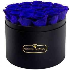 Tmavě modré věčné růže ve velkém černém flowerboxu