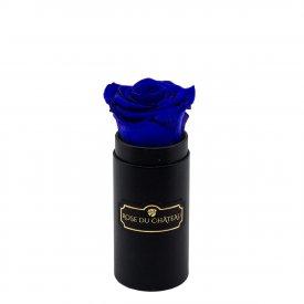 Tmavě modrá věčná růže v černém mini flowerboxu