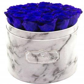 Tmavě modré věčné růže ve velkém bílém mramorovém flowerboxu