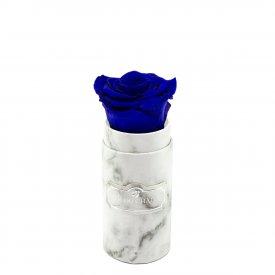 Tmavě modrá věčná růže v mini bílém mramorovém flowerboxu