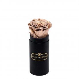 Zlatá věčná růže v černém mini flowerboxu