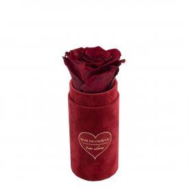 Červená věčná růže v mini bordovém semišovém flowerboxu - LOVE EDITION