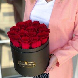 Červené věčné růže v černém kulatém flowerboxu
