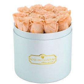 Čajové věčné růže v modrém flowerboxu