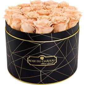 Čajové věčné růže ve velkém černém industrial flowerboxu