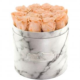 Čajové věčné růže v bílém mramorovém flowerboxu