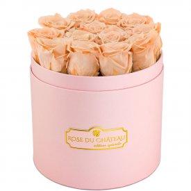 Čajové věčné růže v růžovém flowerboxu