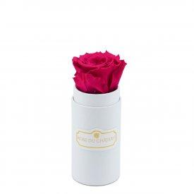 Růžová věčná růže v bílém mini flowerboxu