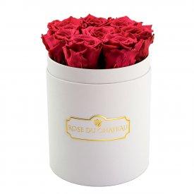 Růžové věčné růže v malém bílém flowerboxu