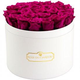 Růžové věčné růže ve velkém bílém flowerboxu