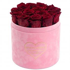 Červené věčné růže v růžovém semišovém flowerboxu - LOVE EDITION