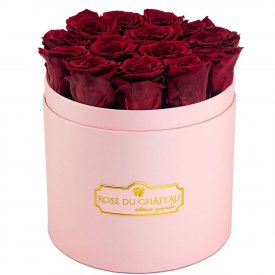 Červené věčné růže v růžovém flowerboxu