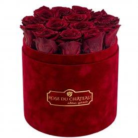 Červené věčné růže v bordovém semišovém flowerboxu