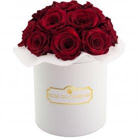 Červené věčné růže bouquet v bílém flowerboxu