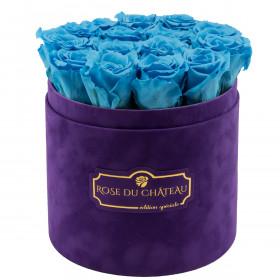 Modré věčné růže ve fialovém semišovém flowerboxu