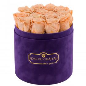 Čajové věčné růže ve fialovém semišovém flowerboxu