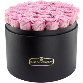 Světle růžové věčné růže ve mega černém flowerboxu