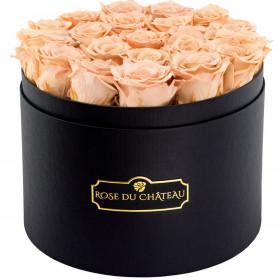 Čajové věčné růže ve velkém černém kulatém flowerboxu