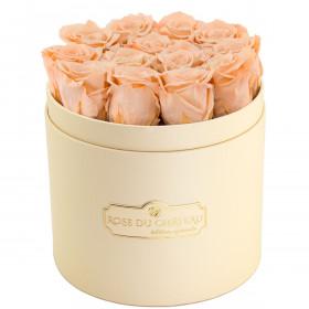 Čajové věčné růže v broskvovém flowerboxu