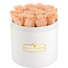 Čajové věčné růže v bílém kulatém flowerboxu