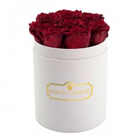 Červené věčné růže v malém bílém flowerboxu