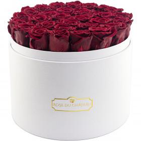 Červené věčné růže ve mega bílém flowerboxu