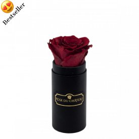 Rote Ewige Rose in schwarzer Mini Rosenbox
