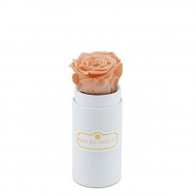 Teefarbee Ewige Rose in weißer Mini Rosenbox