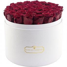 Rote Ewige Rosen in weisser Rosenbox Mega