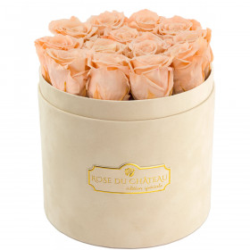 Teefarbene Ewige Rosen in beigefarbiger Beflockter Rosenbox