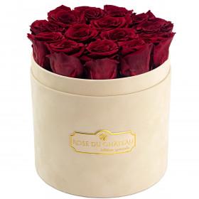 Rote Ewige Rosen in beigefarbiger beflockter Rosenbox