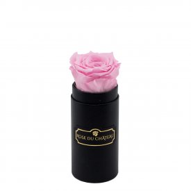Eternity Pale Pink Rose & Mini Black Flowerbox