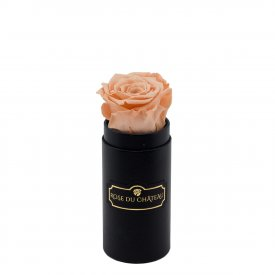 Eternity Peach Rose & Mini Black Flowerbox