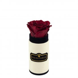 Eternity Red Rose & Mini Coco Flocked Flowerbox