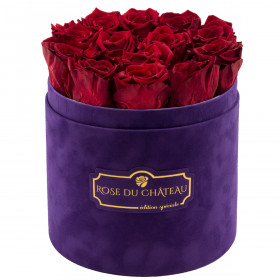 Eternity Red Roses & Violet Flocked Flowerbox
