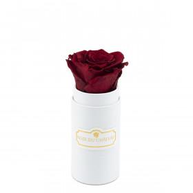 Eternity Red Rose & Mini White Flowerbox